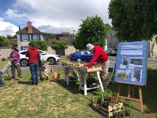 Une première au Vaudoué : La trocante du jardin